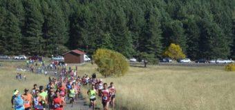 """4° Trofeo dell'Etna """"Memorial Angelo D'Arrigo"""""""